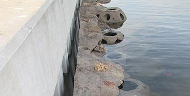 CRA Riverside Living Seawall